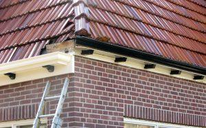 Vervangen dakgoot en overstek met kunststof in Lutjebroek